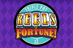 Slot Reels of Fortune - Triple Pay